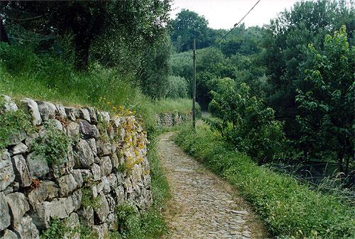 Itinerario - Sentiero per la Rocca Martinengo - Menzino - Montisola