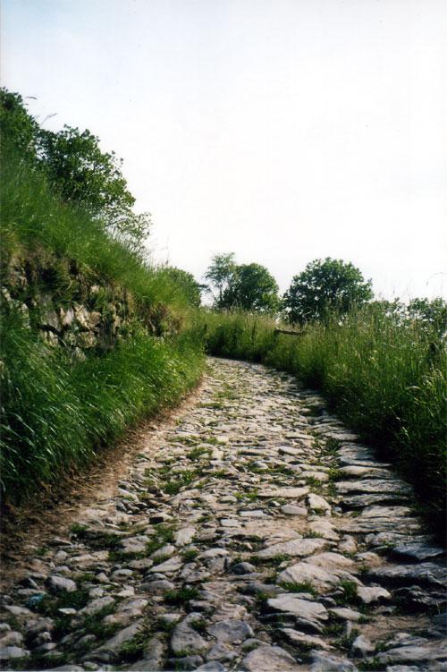 Sentiero per la madonna della ceriola