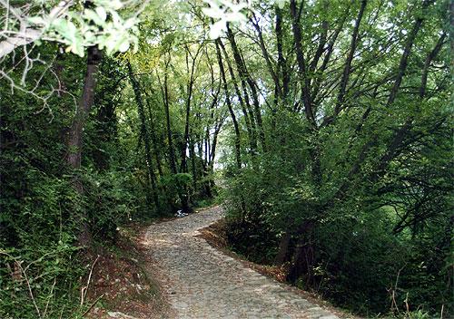 Sentiero - Rocca Martinengo