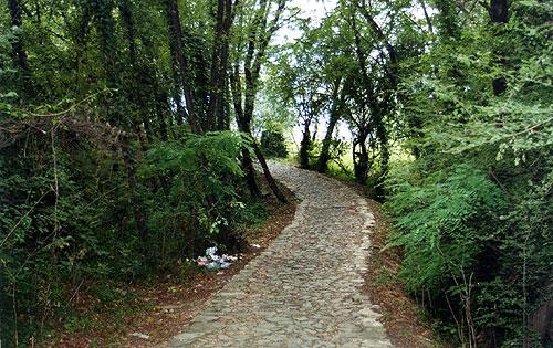 Sentiero - Rocca Martinengo - 1